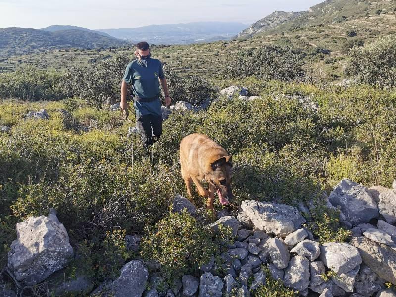 La Guardia Civil localiza el cuerpo sin vida de una persona en Catí