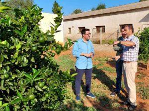 EL PP de Vila-real pide más ayudas para la investigación citrícola