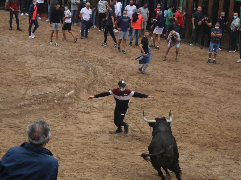 Masiva participación en los bous al carrer de este fin de semana en Nules